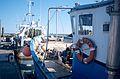 Chalutiers de pêche côtière (8).jpg