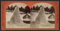 Champion Spring in Winter, from Robert N. Dennis collection of stereoscopic views 2.png