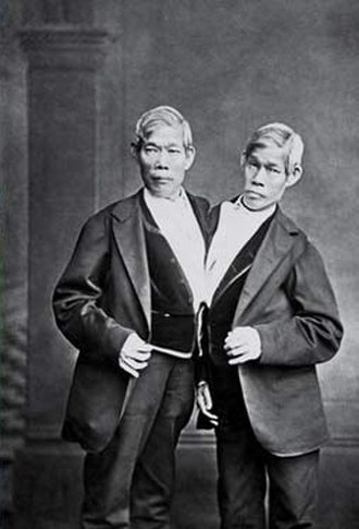 Chang and Eng Bunker - The Bunkers in their later years
