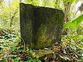 Chenstochov ------- Jewish Cemetery of Czestochowa ------- 87.JPG