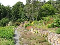 Chesters Walled Garden - the Thyme Bank - geograph.org.uk - 1461246.jpg