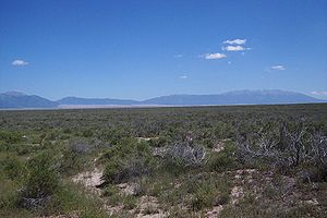 "San Luis Valley - Typical greasewood ""chico brush"" in the San Luis Closed Basin of the northern San Luis Valley in Colorado. Taken just south of the bridge over La Garita Creek on Highway 17 between Hooper and Moffat, Colorado. View is to the southeast. The Great Sand Dunes are in the background as are the Sangre De Cristo Range. Medano and Mosca Passes are the low points, the Sierra Blanca is to the right."