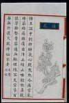Chinese Materia Medica illustration, Ming; Cassia blossom Wellcome L0039302.jpg