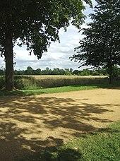 View From Poplar Walk Of Christ Church Meadow