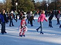 Christmas Ice Rink, Kew Gardens - geograph.org.uk - 296102.jpg