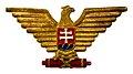 Ciapkovy odznak vojnovej Slovenskej republiky 1939-1944.jpg