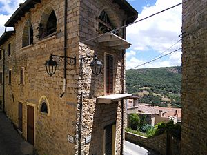 Gavoi - A glimpse of the town with the typical granitic stone houses