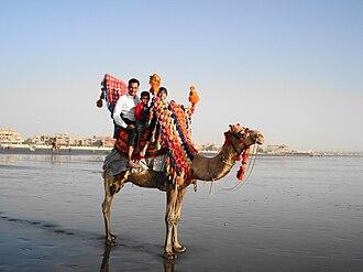 Clifton Beach, Karachi - Clifton beach is popular for its camel rides.