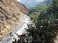 Colca Valley 2007 15.jpg