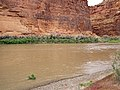 Colorado River (Professor Valley, northeast of Moab, Utah, USA) 2 (19855898342).jpg