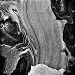 Columbia Glacier, Calving Terminus, Terentiev Lake, August 22, 1987 (GLACIERS 1408).jpg