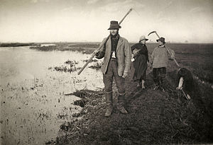 Platinum print - Image: Coming Home from the Marshes, Peter Henry Emerson, 1886