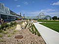 Como Park Zoo and Conservatory - 20.jpg
