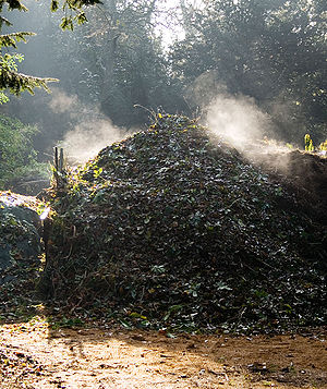Compost heap on a frosty morning. The rising s...
