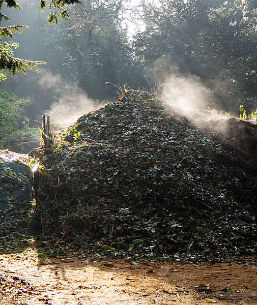 Compost steaming - Wikimedia Commons