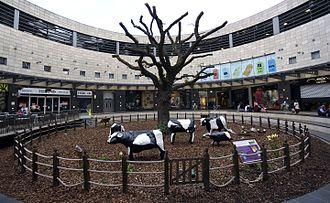 Concrete Cows - The original Concrete Cows at INTU Milton Keynes