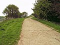 Concreted lane (1) - geograph.org.uk - 430116.jpg