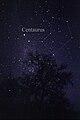 Constellation Centaurus.jpg