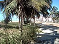 Coqueiral - panoramio (2).jpg