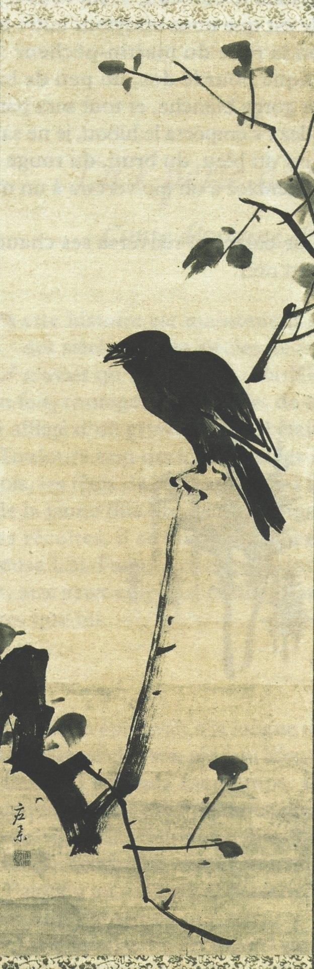 Corbeau branche Kyo