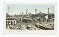Cotton on the Levee, New Orleans, La (NYPL b12647398-62275).tiff