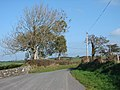 Country lane at Rhosgoch - geograph.org.uk - 265969.jpg