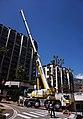 Crane in Monaco.jpg