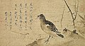 Crested Myna by Sesson (Tokiwayama Bunko).jpg