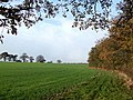 Crop Field by Copse, Middleton Scriven, Shropshire - geograph.org.uk - 617708.jpg