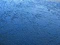 Curico, aguas del Guaiquillo (9619236950).jpg