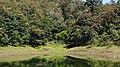 DSC01782 Periyar National Park.jpg