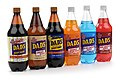 Dad's Root Beer Co. Products in 1 Liter Group Shot.jpg