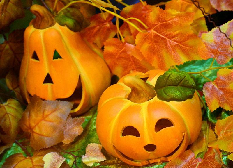 File:Das Halloween-Schaufenster, Sanok..JPG