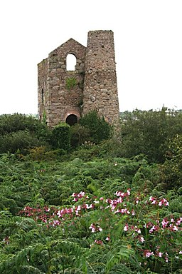 Daubuz' Engine House at South Wheal Francis - geograph.org.uk - 534684