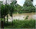 Davao river.jpg