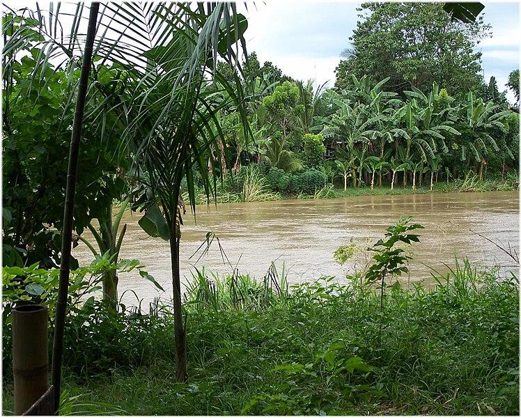 File:Davao river.jpg