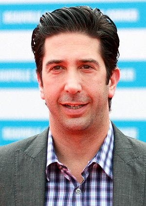 The Pilot (Friends) - David Schwimmer received considerable praise