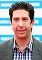 David Schwimmer 2011.jpg