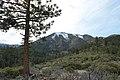 Davis Creek Park - panoramio (49).jpg