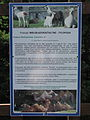 Descriptions of animals in the Silesian Zoological Garden n 07.JPG