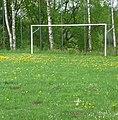 Dieser Fußballplatz hat alles, was er braucht, Gänseblümchen, Löwenzahn und Maulwurfshügel. - panoramio.jpg