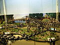 Diplodocus Apatosaurus Allosaurus and Stegosaurus at the CMNH 02.jpg