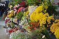 Distintos tipos de flores en colores vibrantes en el Mercado de Medellín.jpg