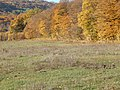 Dobrovat, Romania - panoramio (8).jpg