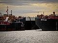 Docked Ships.jpg