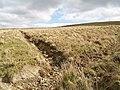 Drainage ditch, Easterhill Head - geograph.org.uk - 395031.jpg