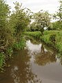 Drainage ditch on Otmoor - geograph.org.uk - 180739.jpg