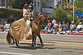 Dress on horse (4911421747).jpg