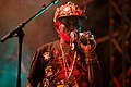Dubblestandart Lee Perry popfest2015 09.jpg