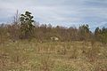 Duben vysenske kopce 39.jpg